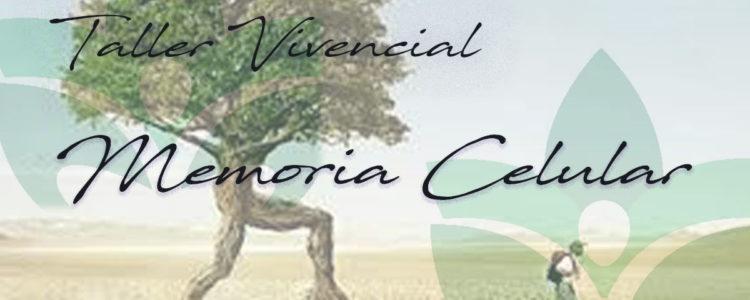 Taller Vivencial de Memoria Celular