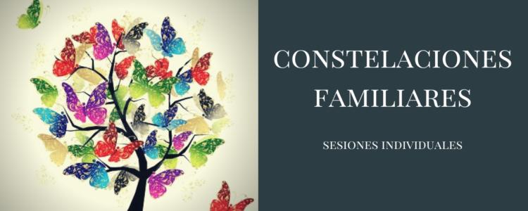 Constelaciones Familiares/ Sistemáticas en sesiones individuales